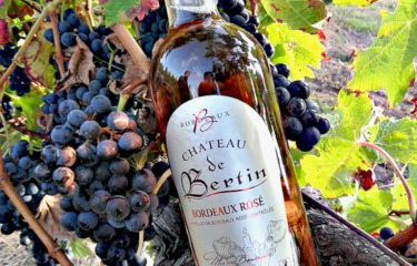 CHATEAU DE BERTIN ROSE